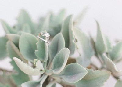 Maxeen Kim - Wedding Photographer in Greece and the UK - close up of diamond rings on a succulent