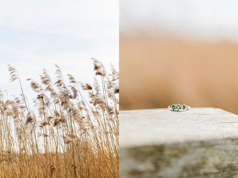 Maxeen Kim Photography, Outdoor Amsterdam Engagement, Fine Art Photography, Destination Wedding