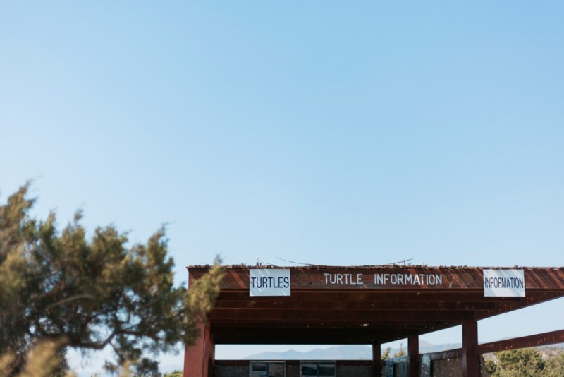 Maxeen Kim Photography, Travel Photography, Destination Wedding Photographer, Cypurs Wedding Photographer, 8 Things to do with Your Wedding Guests in Cyprus, Turtle Nesting Beach