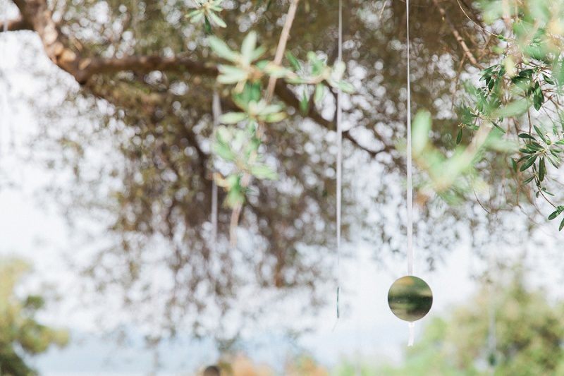 Small Circluar Mirrors Hanging From an Olive Tree