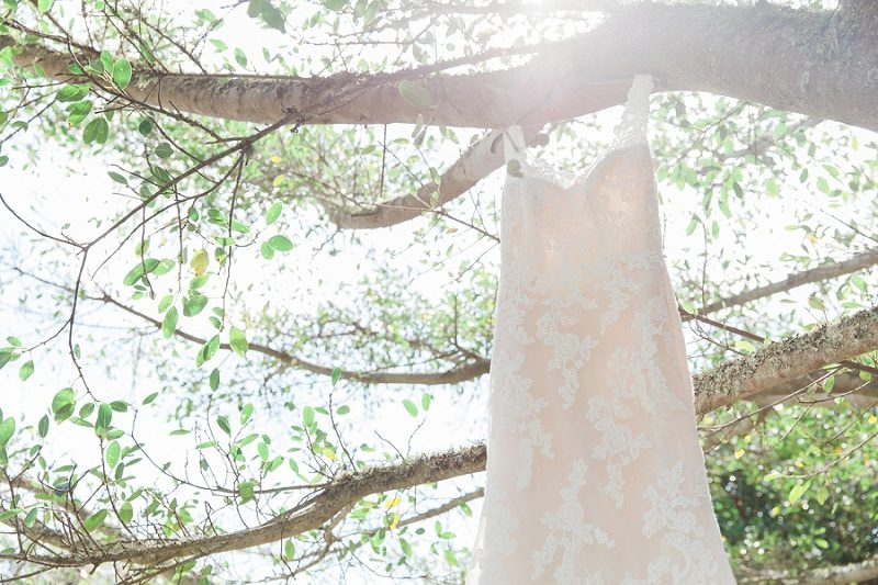Wedding Dress in a Tree for Pistachio and White Wedding at Lake Eland Game Reserve